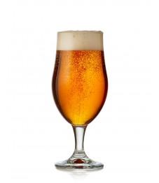 Taça Munique Cerveja 490ml