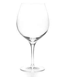 Taça Universal Vino burgundy